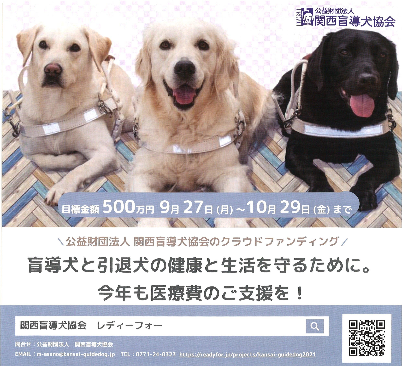 https://kansai-guidedog.jp/report/8c70653232022d807e4653ba9236089184d42ed3.jpg