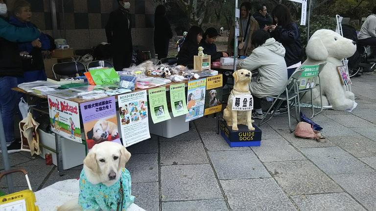 20190331京都動物フォーラム.jpg